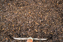 Path Mulch